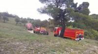 Actu - Incendies: les élus forestiers en première ligne