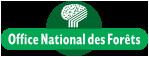 Dépérissements des forêts: dans l'Allier aussi, l'ONF constate les premiers signes du changement climatique